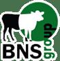 БНС Україна BNS Group